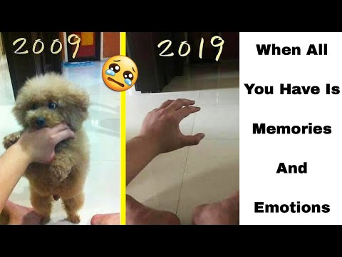 Emotional Moments In Life That Can Touch Your Heart
