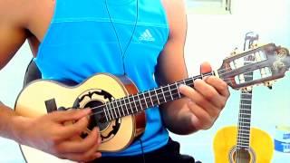 """Video aula""""CAMINHO DAS FLORES""""REVELAÇÃO(Renan do Cavaco)TUTORIAL SIMPLIFICADA"""