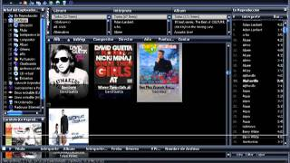 BUSCAR DESCRIPCION DE PISTAS DE AUDIO CON MEDIA MONKEY 1/1