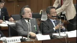 2015 06 04 衆議院憲法審査会