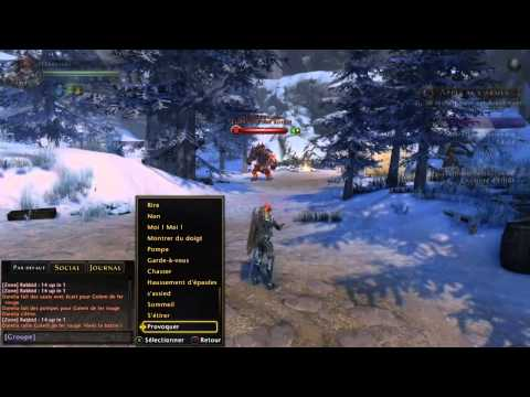 Build Paladin Tank Neverwinter En Francais