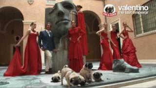 Valentino's Pugs!