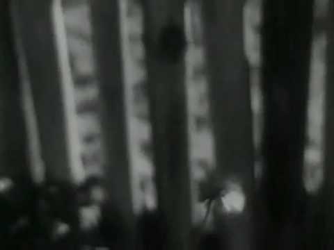 Limite (1931). Abstrações nº. I