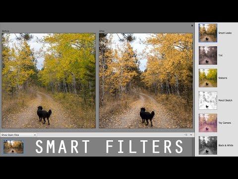 Oshop Elements Smart Filters