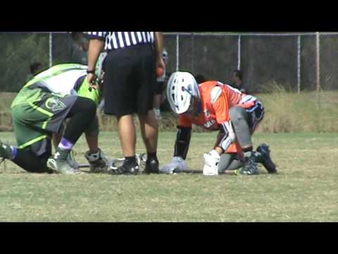 2016 Veteran's Day Invitational Palm Coast Sand Sharks U15 vs. Viera Venom