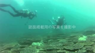 月刊ダイバー2014年10月号連動企画、松嶋初音さんが体験したExplorerを...