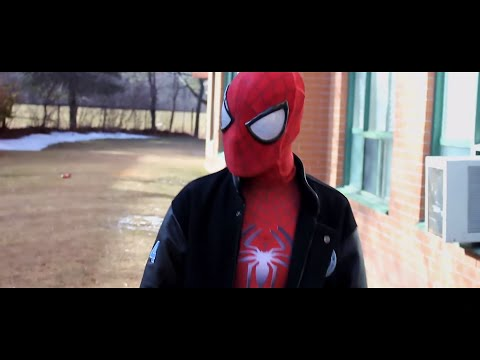 The Avenging SpiderMan  Film