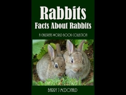 Rabbits - Facts About Rabbits (Childrens Book Trailer)