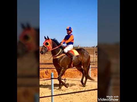Corrida de cavalos, Jockey Club, Vitor Souza, Baixão do Poço Uibaí