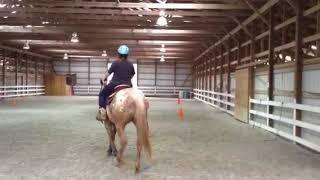 Stormy Rachel star horsemanship clinic3- 2017
