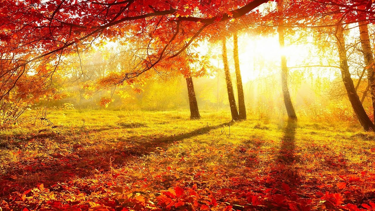 Fall Blessings Wallpaper Beautiful Autumn Autumn Music Part 4 New Age