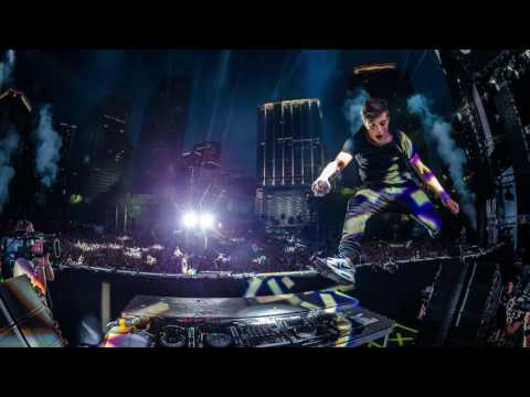 Lions In The Wild [UMF Intro Edit] HQ -  Martin Garrix & Third Party