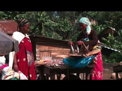 AFP: Elections en RDC: les habitants du Nord-Kivu veulent la sécurité