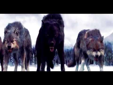 Wolfteam - GölgeHaramileri - Kral Biziz ( KLan Şarkısı )