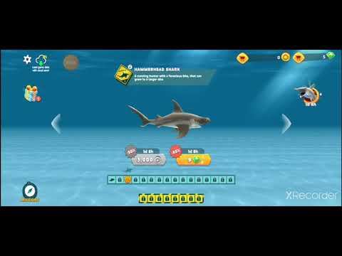 cách hack hungry shark evolution android - cách hack hungry shark