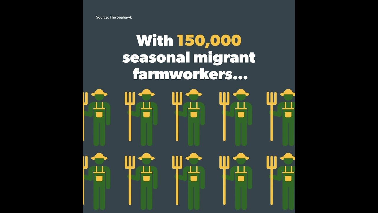 The Impact of North Carolina's Migrant Farmworkers