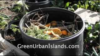 Organic Potatoes In A Compost -- Investment To Produce Soil And Food