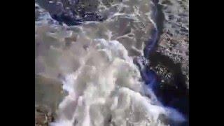 Коктебель нудистский пляж 2015 Крым Экология пляжей(Первый необъявленный визит Ростислава Сторожика по экологическому вопросу, поднятому компанией
