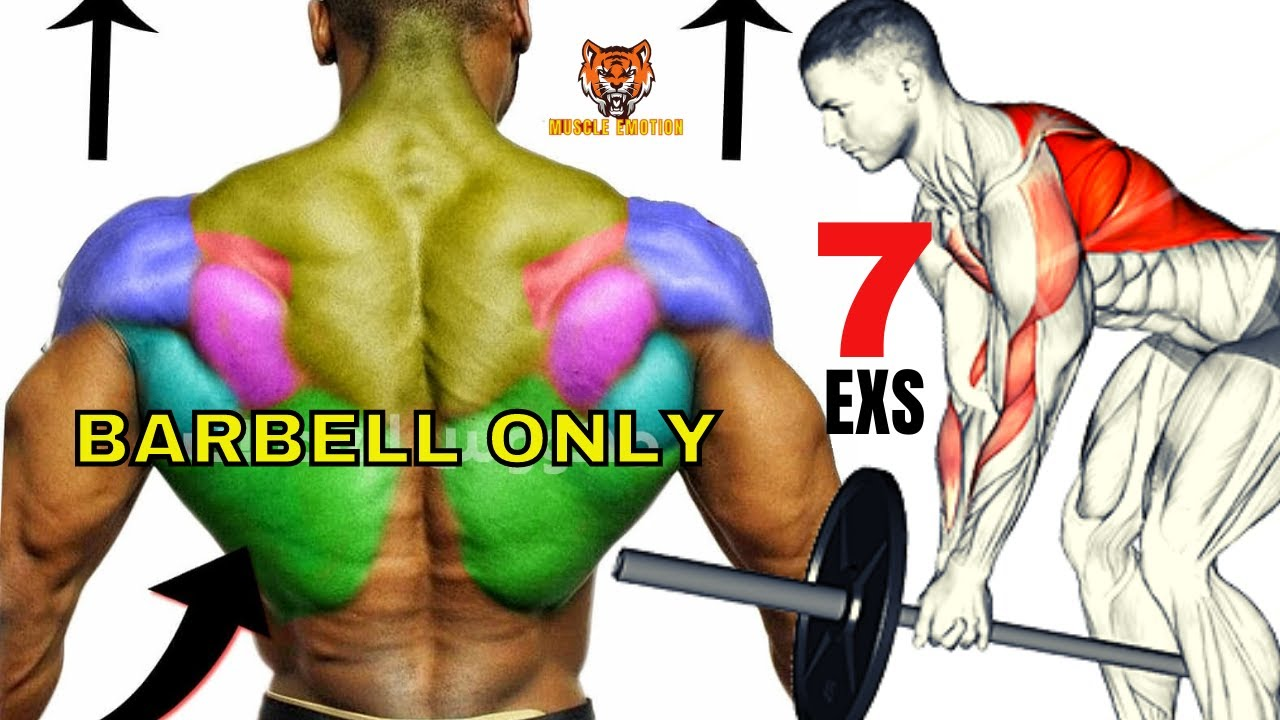 7 BEST BACK EXERCISES  WITH BARBELL TO GET BIGGER BACK FAST