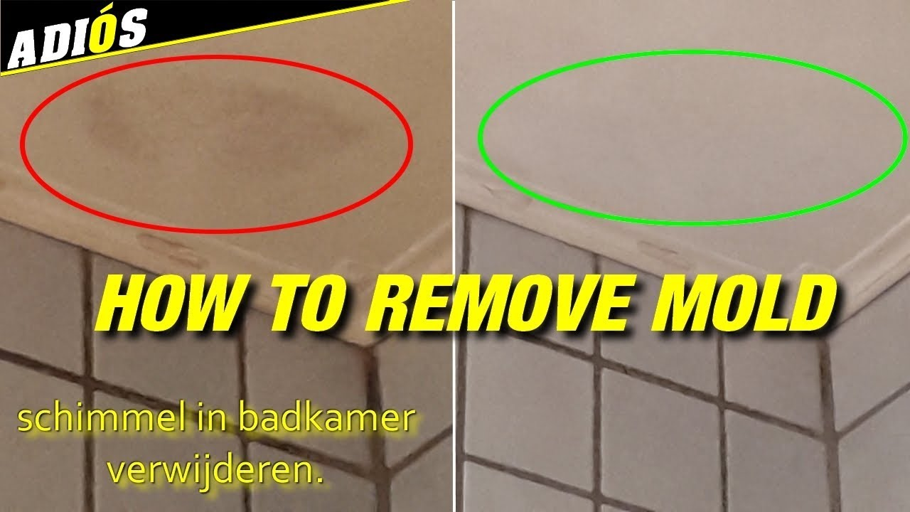 HOW TO REMOVE MOLD IN BATHROOM / Schimmel in de badkamer ...