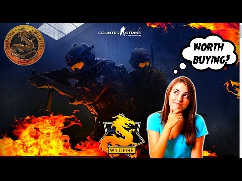 is counter strike global offensive worth it