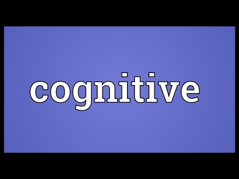 Cognitive Meaning