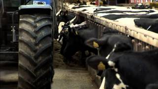 X-Zelit® est un produit pour la réduction du risque de la fièvre de lait chez la vache