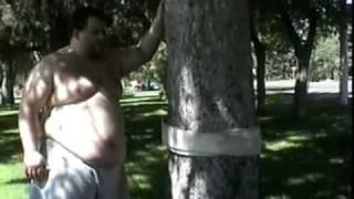 Sumo ing Trees
