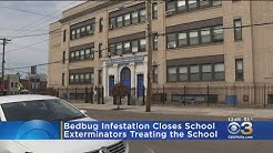 Bed Bug Infestation Shuts Down Local Charter School
