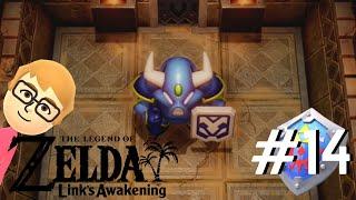 The Legend of Zelda Link's Awakening - Part 14: Absolute Bull