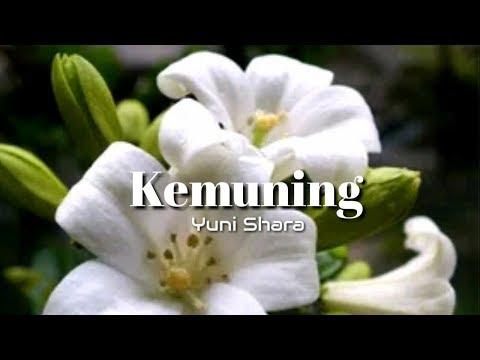 Kemuning - Yuni Shara (Lyrics)