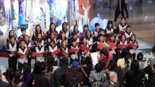 畢架山小學合唱團演唱 2015 12 08 1600 太古城中心