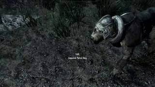 The Elder Scrolls V: Skyrim (pt10) - A Blade in the Dark