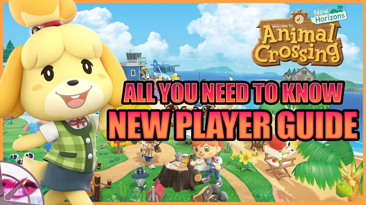 Animal Crossing New Horizons   New Player Guide - All you need to know!