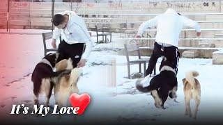 Bajrami dhe Erza dalin ne takim, i sulmon e i han qeni - It's My Love