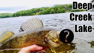 NEVER CAUGHT THIS FISH BEFORE!!! Multi Species Fishing the BIGGEST Lake in Maryland