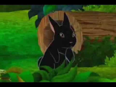 El Conejo - Musica cristiana para Niños