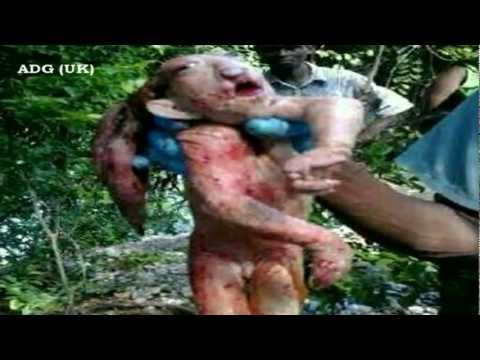 Bizarre Muppet-Like Beast Discovered in Nambia 2012