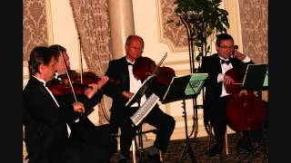 Yellow by Coldplay | String Quartet Tribute | Art-Strings Ensemble | New York, NY Thumbnail