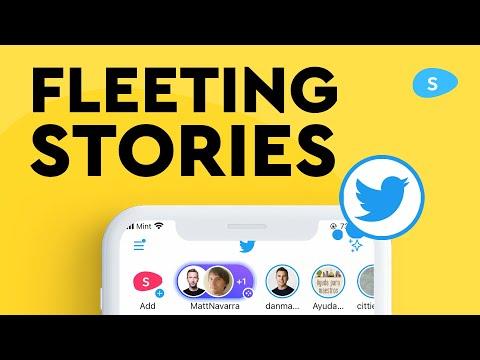 A Fleeting Story: How Twitter Fleets Failed
