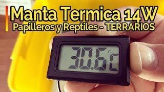🔥CÓMO REGULAR TEMPERATURA 🔥 en Terrarios con Manta Térmica 28x28cm 14 W