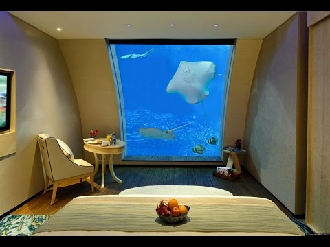 Fish Tank Bed Ideas For Modern Bedroom YouTube - Fish tank bedroom furniture