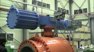 emergency shutdown valve esdv