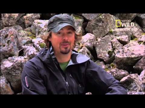 Nat Geo Wild Expedition Grizzly