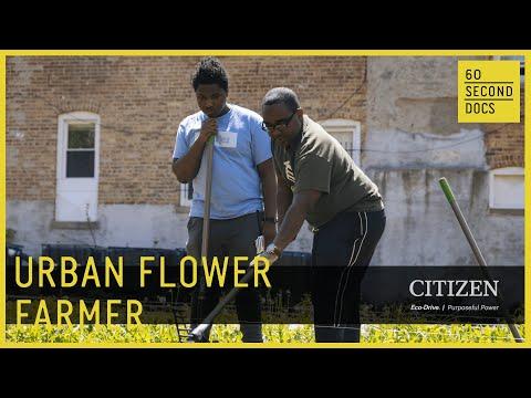 The Urban Flower Farmer of Chicago Eco House