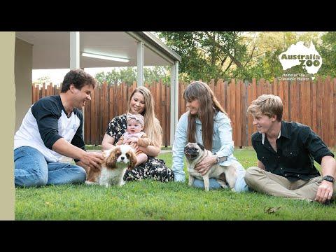 Celebrate National Pug Day   Irwin Family Adventures