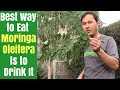 Best Way to Eat Moringa is to Drink It - How to Juice Fresh Moringa Oleifera Leaves