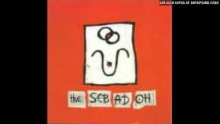 Watch Sebadoh Its All You video