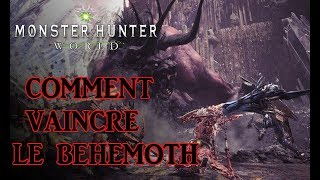 Watch Behemoth Comment video