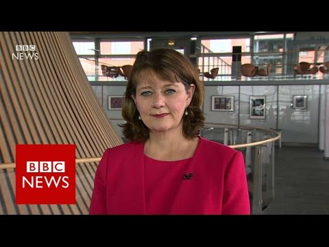Plaid Cymru want to make sure Wales is stronger in the future - BBC News
